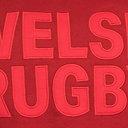Gales WRU 2017/19 Gráfica Rugby - Sudadera con Capucha