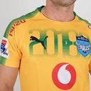 Bulls 2018 Alternate Camiseta de Super Rugby